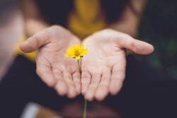 jak wspierać opiekuna osoby chorej na alzheimera